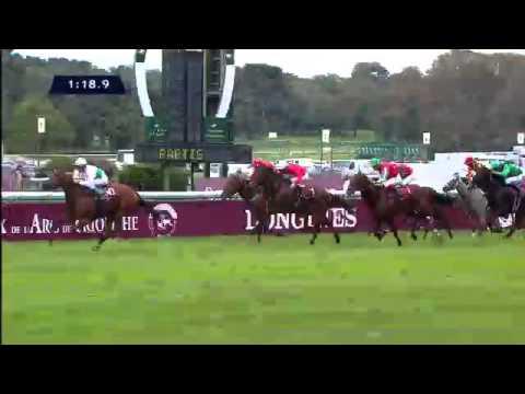 Vidéo de la course PMU QATAR PRIX DE LA FORET