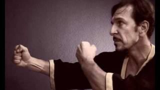Wing Chun hareketleri