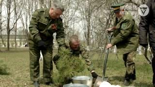 Зеленый субботник – ветераны, волонтеры и школьники высадили новую аллею в парке авиаторов