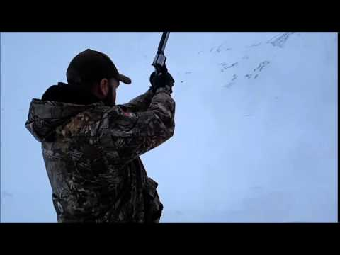 Smith & Wesson 460XVR Bone Collector #795 Svalbard