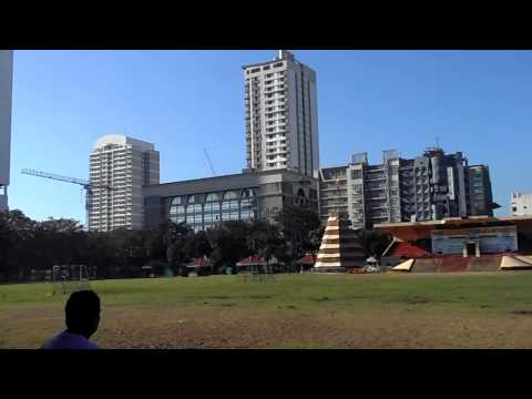 ALIGN T-REX 450 FUN FLY @ UST GROUNDS WITH JR ON CAMS