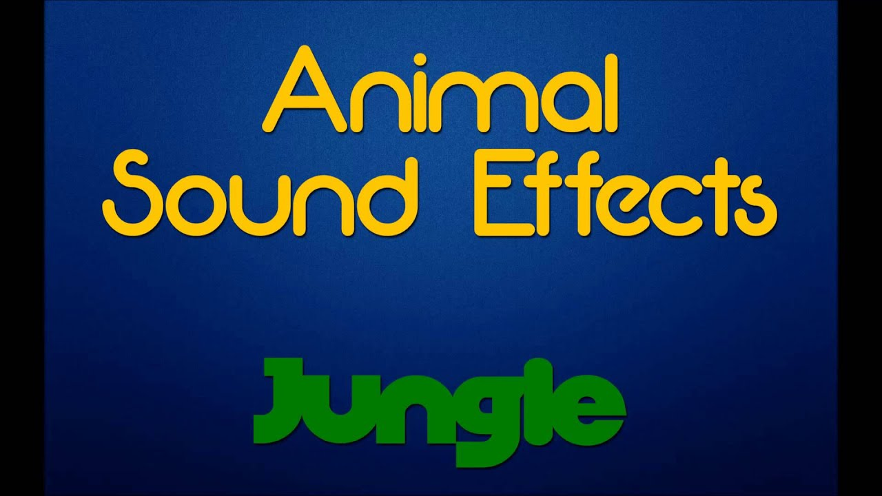 Wild animal sounds free download mp3