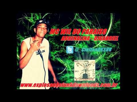 MC WIL DO PARAISO - ADRENALINA ' DJ GABRIEL'