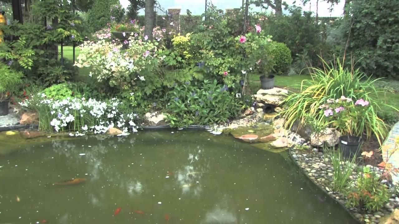 Le bassin de jardin aux hortensias youtube for Creation bassin de jardin