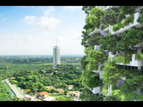 Vertical Garden In Sri Lanka To Be Worlds Highest