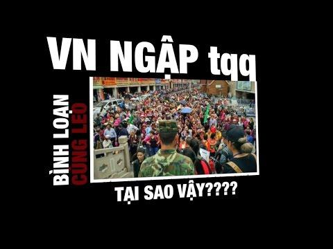 Việt Nam ngập tràn trung quần què - Bình loạn với Leo