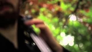 Donovan Woods - Let Us Now Praise Simple Men | Live in Bellwoods 59