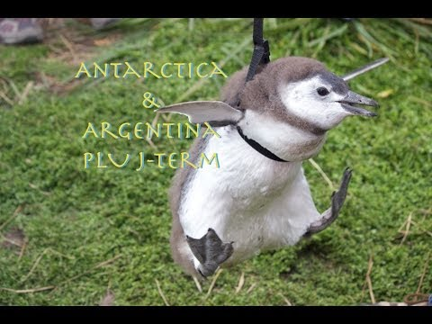 Antarctica & Argentina ~ 6: Hike Back From Fitzroy