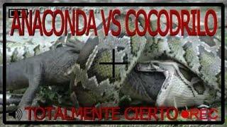 La Anaconda Gigante Vs El Cocodrilo Gigante