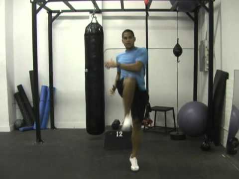 Circuit Workout using TT Olympic Fat Loss Workout B