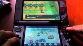 Pokemon X & Y Berry Field Farming Tip