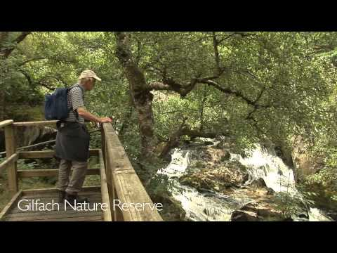 The best UK Holiday visit Rhayader and the Elan Valley