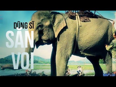 Người sở hữu nhiều... voi nhất Việt Nam | Dũng sĩ săn...voi là đây | Hộp đen cuộc sống