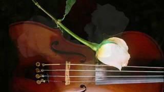 Musica Instrumental La Sombra Del Amor