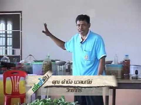 การปลูกผักในกระบอกไม้ไผ่