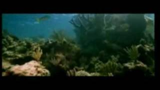 Blue Hindi Movie Full Song Trailer Promo 2009