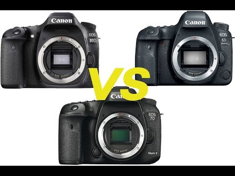 Canon 6D Mark II vs 7D Mark II and 80D Comparison Review