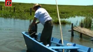 Pescando pirañas