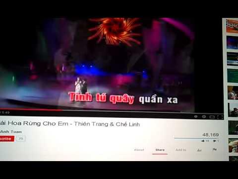 Karaoke - Hái Hoa Rừng Cho Em / CP - mời nam hét cùng