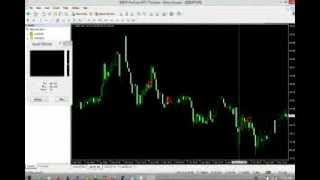Forex mp4 player