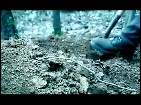 Morir a Ti Mismo   Reflexiones con Video     Recursos Cristianos Gratis en Internet