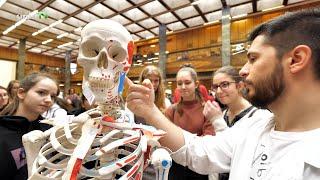 Egyre népszerűbb a PTE Általános Orvostudományi és Gyógyszerésztudományi Kara