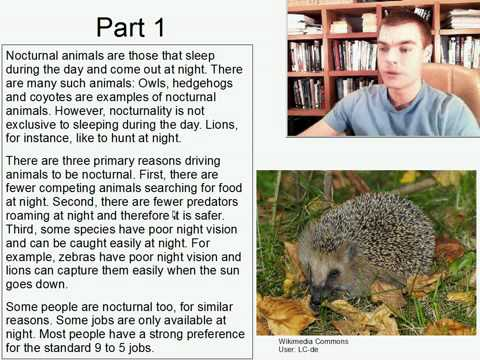 Advanced Listening English Practice 13: Why are animals nocturnal?