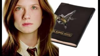 Top 10 Harry Potter Conspiracy Theories