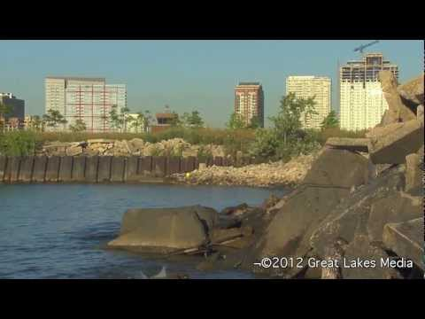 Great Lakes Invasive Species Documentary