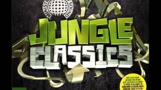 13. Goldie & Rufige Kru - Terminator (Jungle Classics) view on youtube.com tube online.