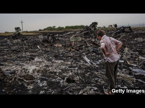 Flight MH17 Crash Could Doom Malaysia Airlines