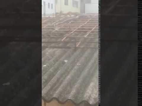 Cobra consegue fugir de bombeiros em Timóteo