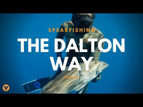 The Dalton Way (Spearfishing)