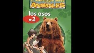 El Maravilloso Mundo De Los Animales De Disney, Los Osos