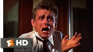 Rebel Without a Cause (1955) - You're Tearing Me Apart Scene (2/10) | Movieclips