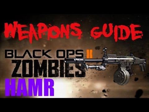 BO2 Zombies HAMR / SLDG HAMR Weapons Guide (Updated)