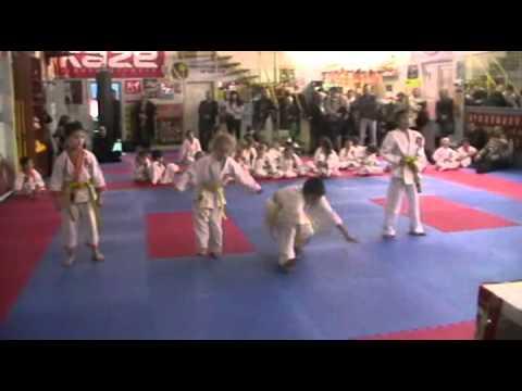 Экзамен по каратэ 3 ноября 2013 года в клубе Тигренок.ч.5