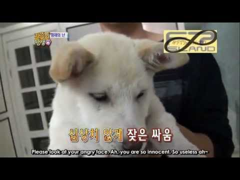 ENG SUB] 111210 INFINITE Birth Of A Family EP5 1_2 - YouTube