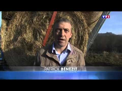 Opération solidarité fourrage - Reportage TF1