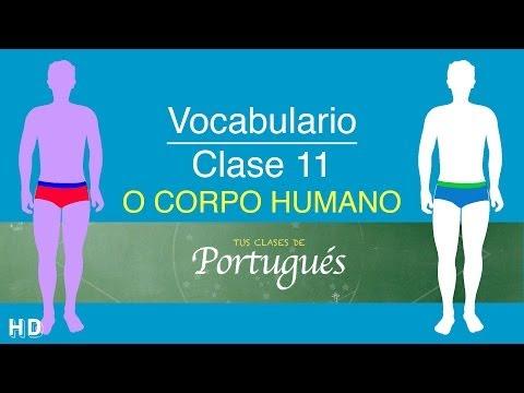 Aprender Portugués - Case 11.3 - Partes del Cuerpo - Vocabulario