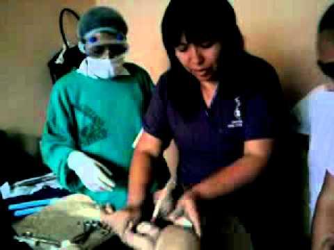 Pasos , tecnicas y instrumentos para un trabajo de parto.