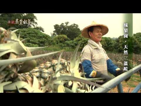 高雄農業故事館-鳳梨(影片長度:16分45秒)