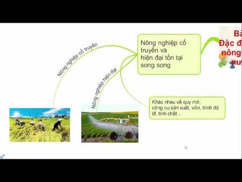 Bài 21. Đặc điểm nền nông nghiệp nước ta