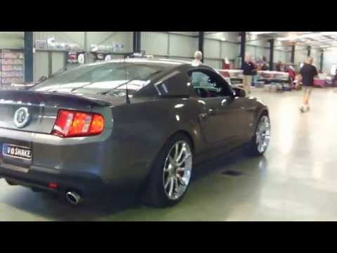 GT 500 SHELBY SUPER SNAKE cruisin