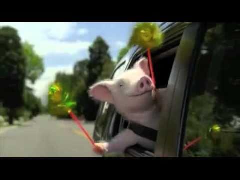 New Geico Piggy Commercial Remix