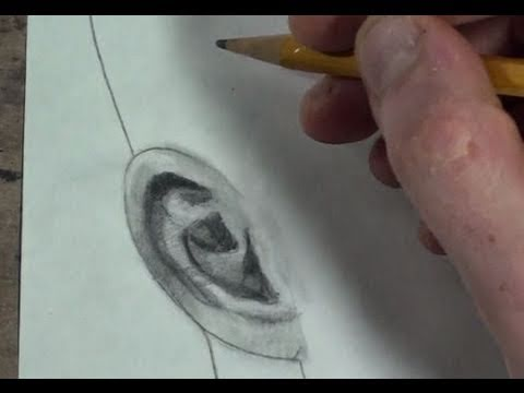 Part 1/3: How to Draw the Ear 3/4 View Step by Step
