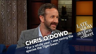 Chris O'Dowd Raised Money For Fake Endangered Species