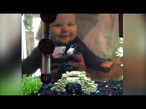 Top 10 FUNNY KIDS AND FISH BECOME BEST FRIEND | Funny Babies and Pets