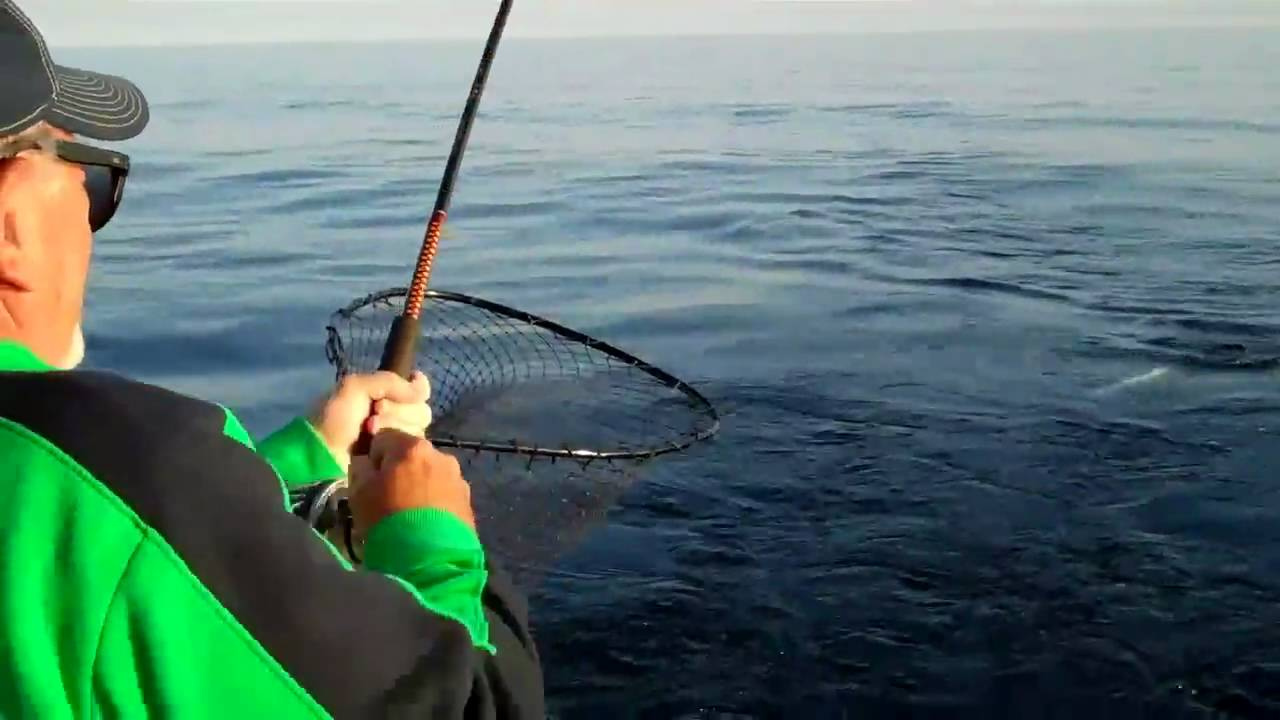 Lake Michigan Charter Fishing For Salmon Visit Sheboygan
