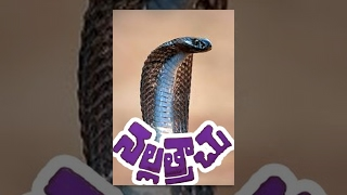 Nalla Trachu Telugu Full Length Movie
